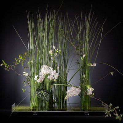 Modern Parallel Flower Design by Nicu